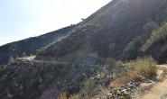 双龙山公园图鉴