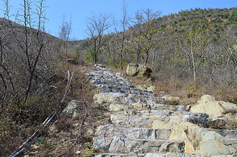 双龙山公园石阶